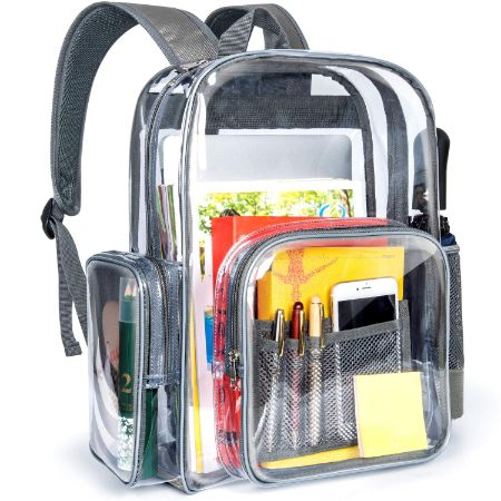 Packism Clear Backpack,